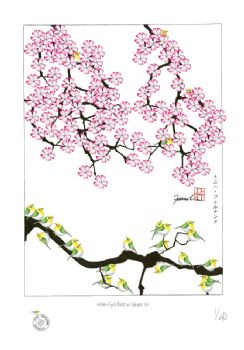 Sakura - Artist Signed Numbered Prints